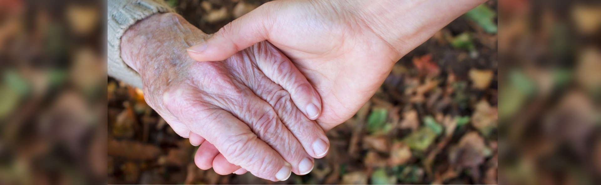 Young_and_senior_holding_hands_over_autumn_leaves_-_1920x593px.jpg